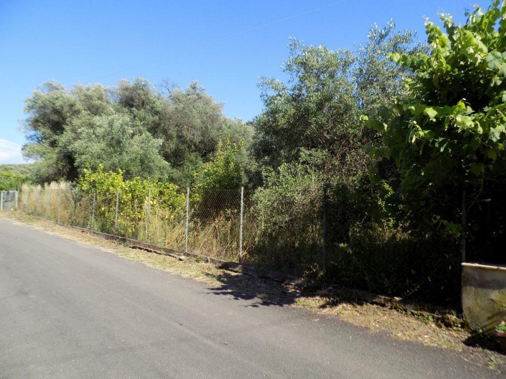 PLOT OF LAND IN PERITHIA (1)