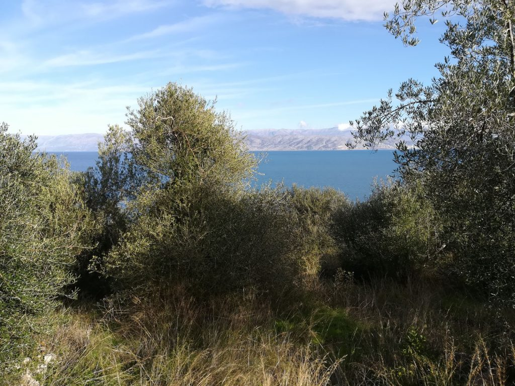 PLOT OF LAND FOR SALE IN APRAOS