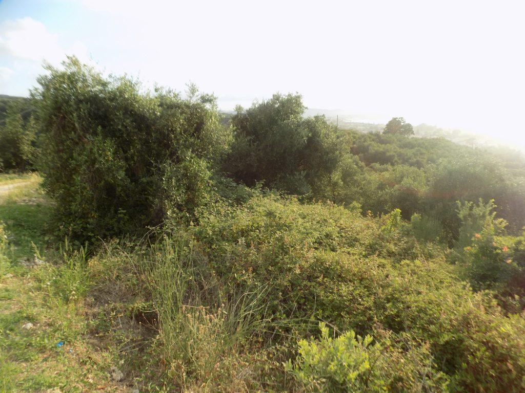 PLOT FOR SALE IN ACHARAVI