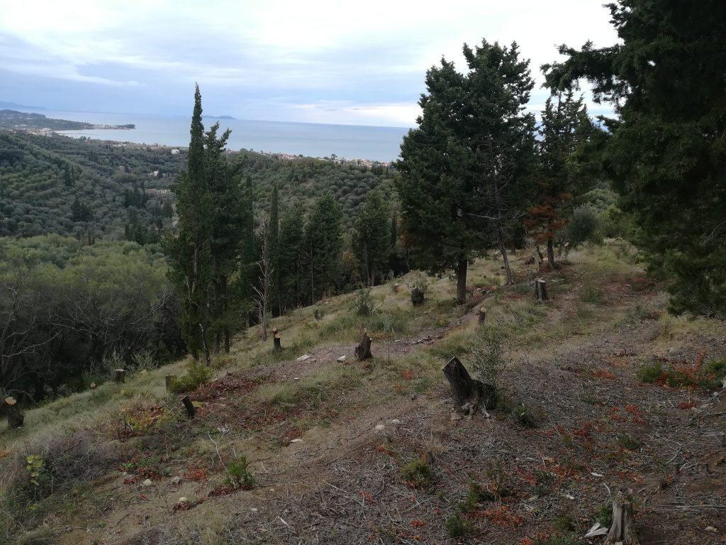 PLOT OF LAND FOR SALE IN AGIOS PANTELEIMONAS