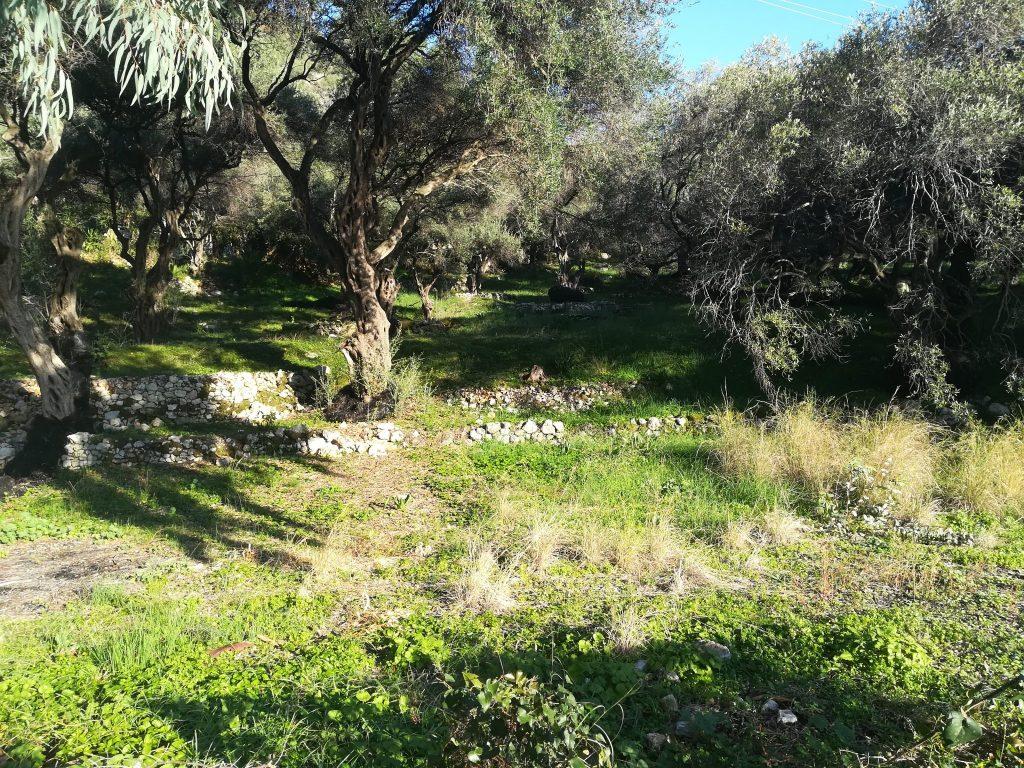PLOT OF LAND FOR SALE IN GLYFA