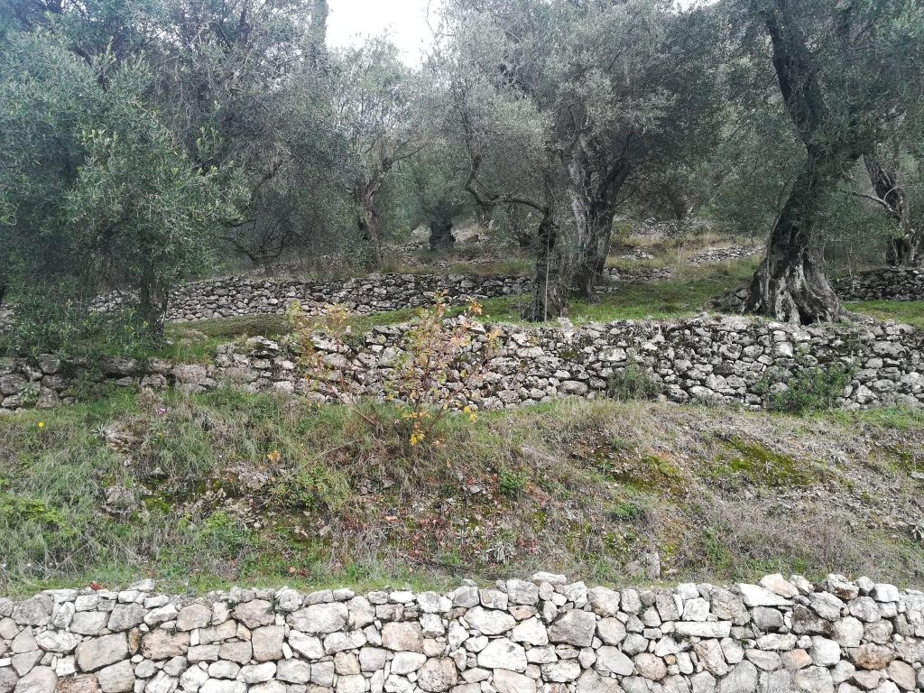 PLOT OF LAND FOR SALE IN SPARTILAS