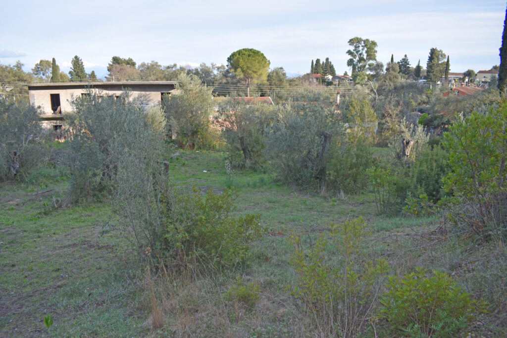 PLOT OF LAND FOR SALE IN KORAKIANA