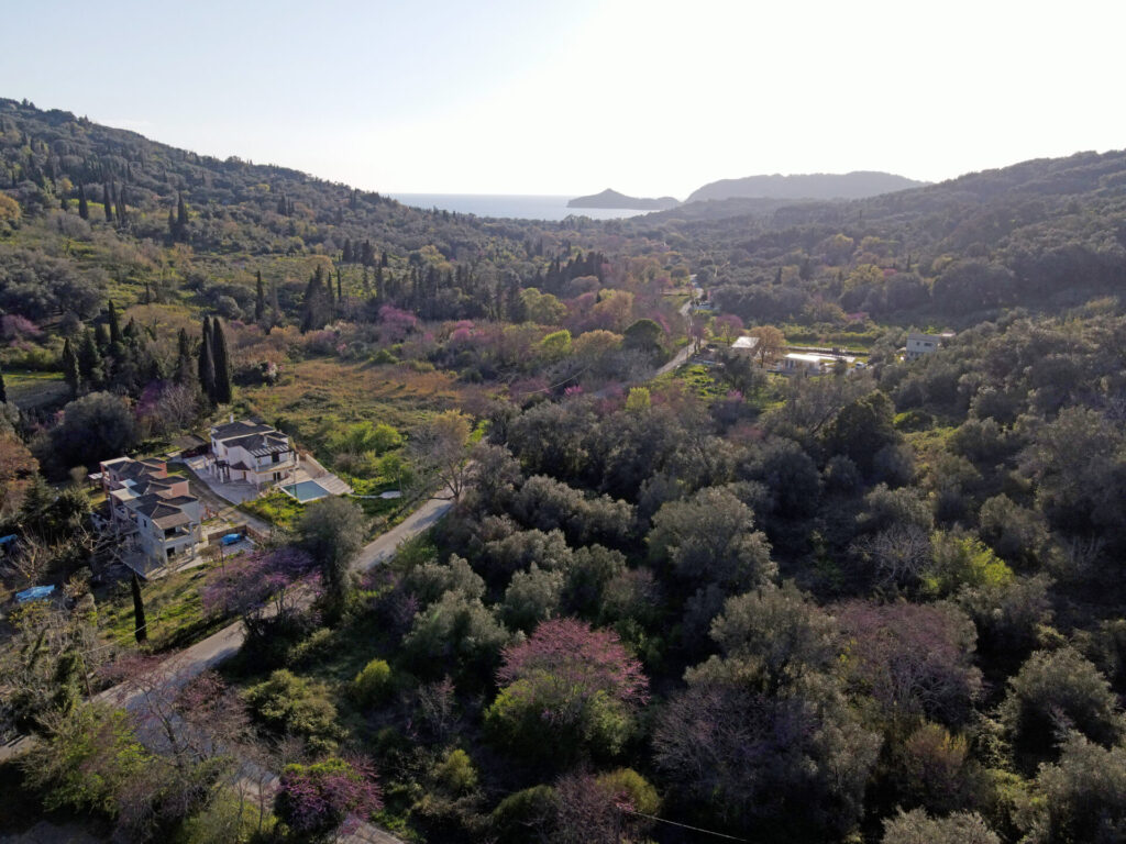 PLOT OF LAND FOR SALE IN AGIOS GEORGIOS