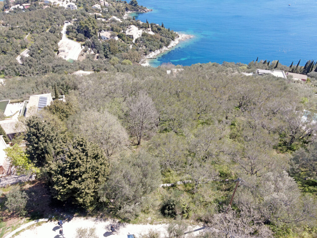 PLOT OF LAND FOR SALE ABOVE SAN STEPHANO