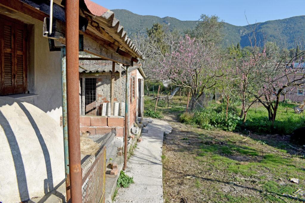OLD HOUSE FOR SALE IN KORAKIANA