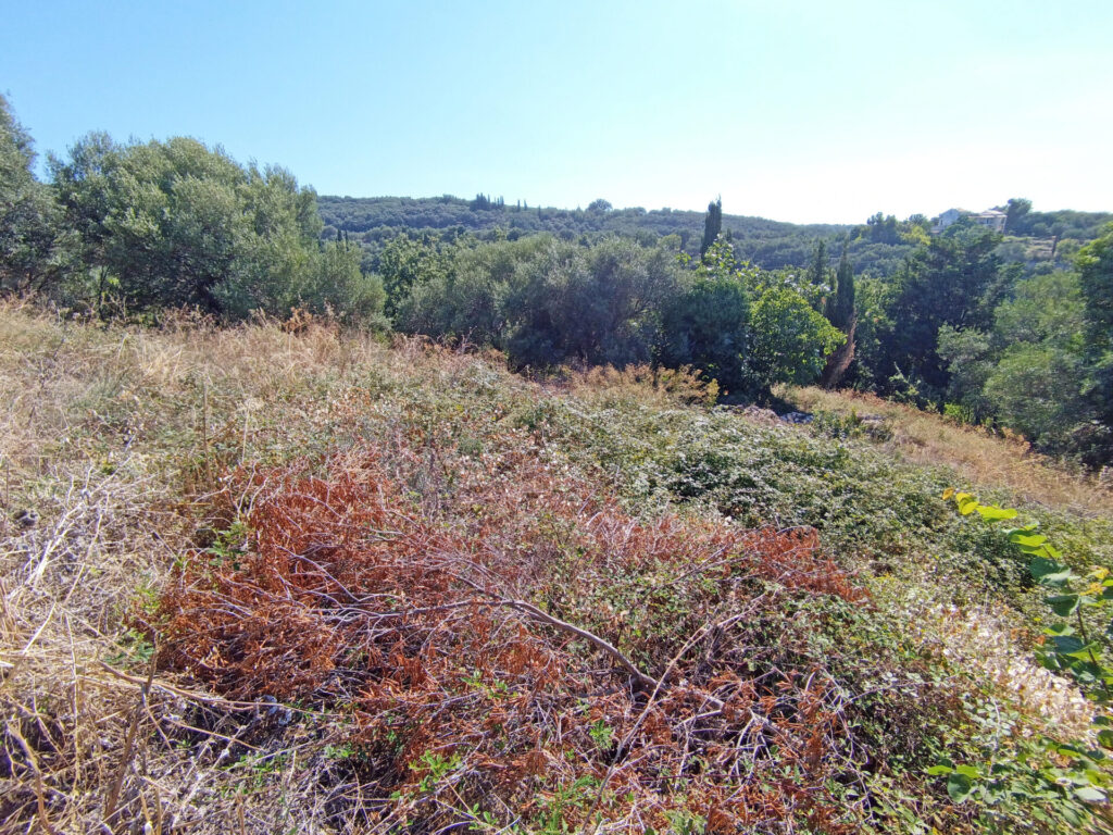 PLOT OF LAND FOR SALE IN ACHARAVI